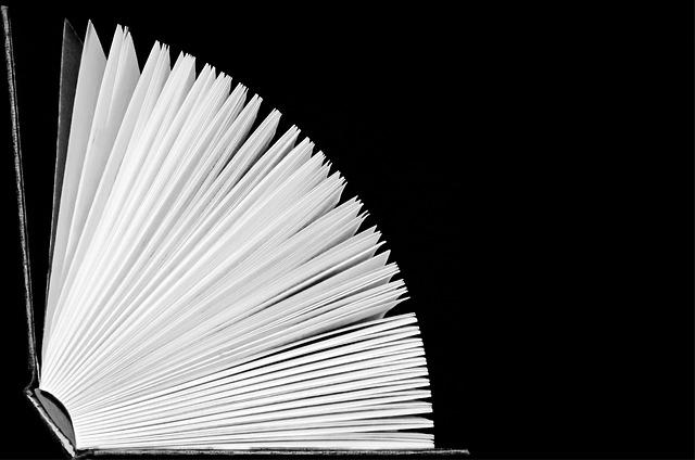 rédiger un livre blanc